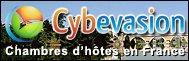 Logo - Cybervasion - Les Forges d'Enfalits